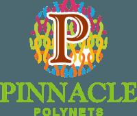 pinnacle polynet